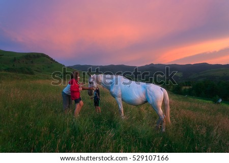 Maramures, Romania - June 22, 2016: Visitors pet a horse in the Carpathian Mountains during Sunset. Shepherds often allow visits to their camp with a small tourist fee. #529107166