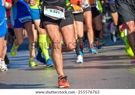 Marathon running race, people feet on road, sport, fitness and healthy lifestyle concept  #255576763