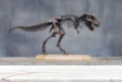 Marble stone counter top table with blur dinosaur fossil background in museum.