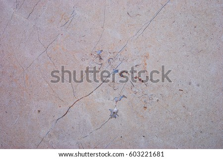 Marble Stone slab panel with natural veining pattern #603221681