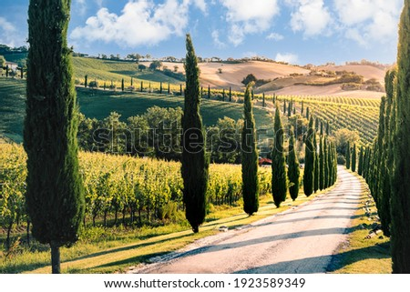 Marche countryside near Macerata, Marche region, Italy Stock fotó ©