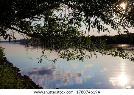 marge shore river water sun sunset sunlight tree Photo stock ©