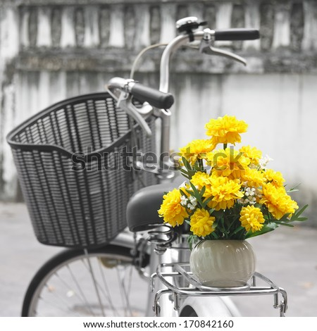 marigold flower and retro...