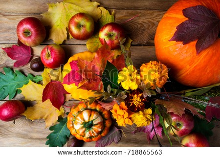 Marigold flowers, apples, pumpkins and colorful fall leaves, top view. Thanksgiving or fall greeting background  #718865563