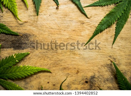marijuana leaf on wooden background