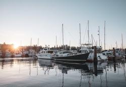Marina ferry dock water sun Pacific Northwest boat