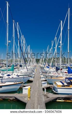 Marina with yachts and boats in Sausalito San Francisco, CA
