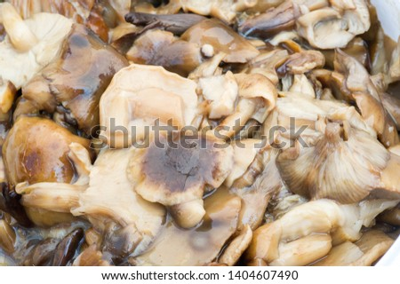 Marinated mushrooms, For products created using this method, commonly called pickles in the United States and Canada, #1404607490
