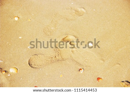 marine background. Selective focus. Nature.  #1115414453