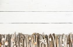 Marine items on driftwood, sea objects decoration on white wood background.