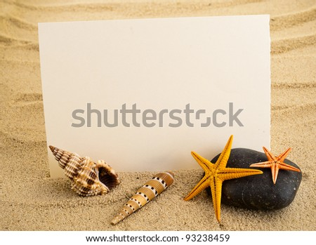 Marine still life with empty paper sheet and some seashells.