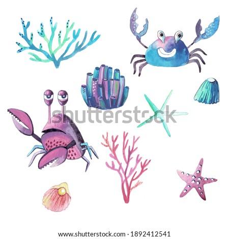 Marine watercolour in realistic style on white background. Marine underwater life. Illustration isolated white background. Ocean background. Summer marine travel. Marine design.