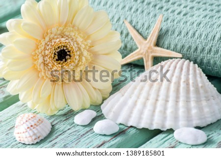 Maritime summertime beach decoration and flowers #1389185801