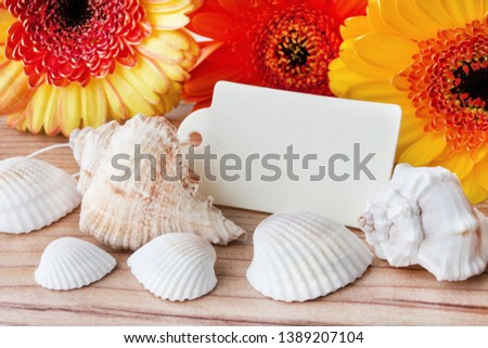 Maritime summertime beach decoration and flowers #1389207104