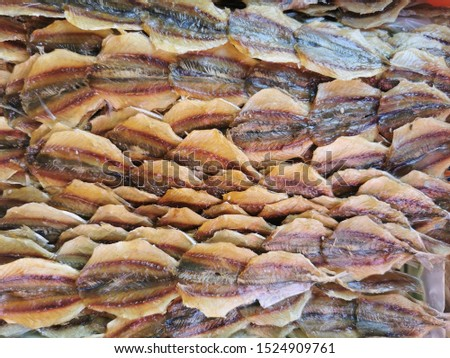 Market for dried seafood, dried shrimp, dried squid and salted fish at rayong Province community. Thailand sea food.
