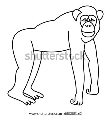 Marmoset monkey icon in outline style isolated on white background  illustration