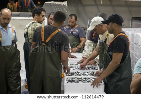 MARONIA, GREECE - JULY 9: unidentified Egyptian commercial fishermen work delivering the sardines night's catch on July 9, 2012 in Maronia, Greece.