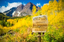 Maroon Bells Aspen trees in Colorado