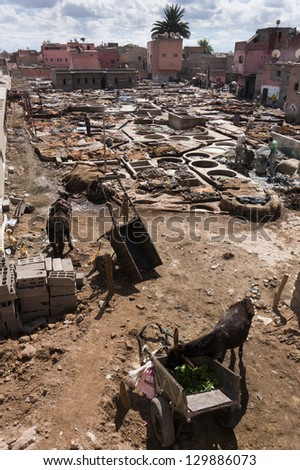 MARRAKECH, MOROCCO - FEBRUARY 22: Aerial view of the leather tannery showing unhealthy and dirty working conditions for the tannery workers on February 22, 2013 in Marrakech, Morocco
