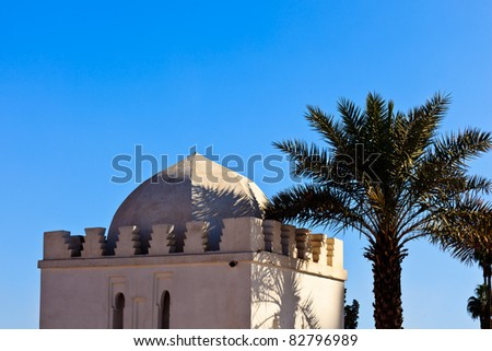 Marrakesh, Morocco:  Whitewashed exterior of traditional domed building and palm tree in Marrakesh, Morocco.