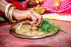 Marriage Ceremony Blessings Rituals, Paddy Grain, Green Grass