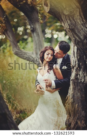 Married Couple embracing , groom and bride