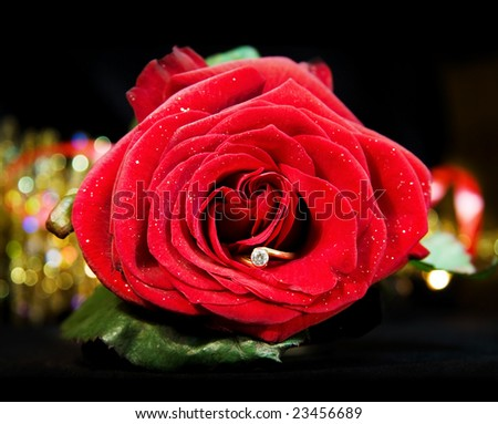 Marry Me! - red rose with diamond ring