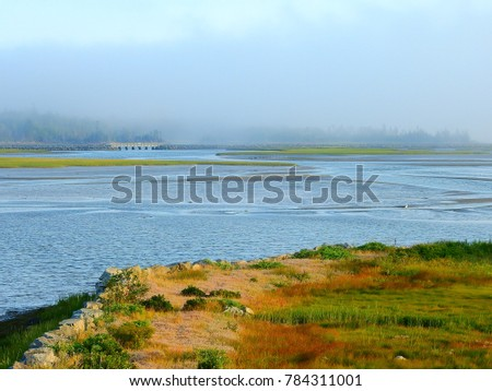 marsh fog and bridge #784311001
