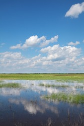Marsh with cultivated land in background and beautiful sky