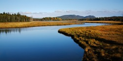Marshall Brook, A Wetlands Area Near Bass Harbor, Acadia National Park, Maine, USA