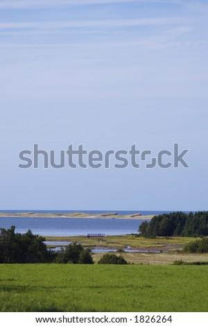 Marshland