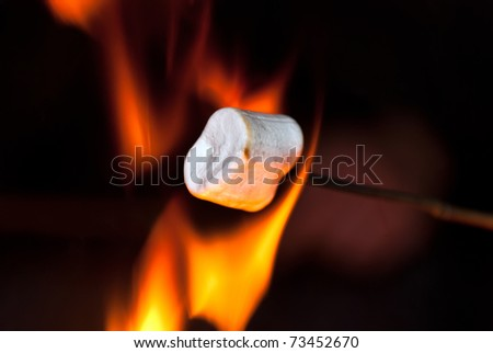 Marshmallow on a stick over the fire