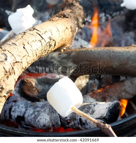 Marshmallow on the bbq