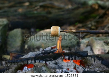 Marshmallow roasting over a campfire