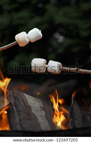 Marshmallows being roasted over a camp fire in the evening.