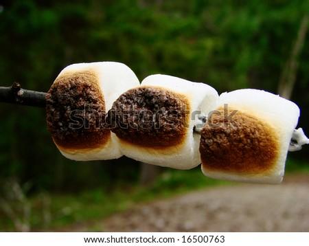 Marshmallows Roasted C...