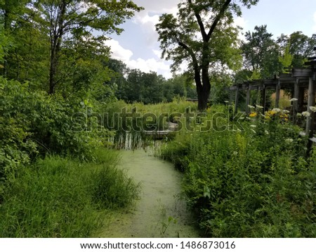 Marshy wetland with old wooden built structures #1486873016