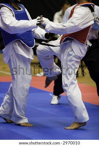 Martial arts competitors in action