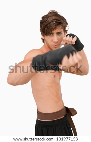 Martial arts fighter in fighting pose against a white background