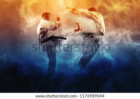 Martial arts masters, karate practice. Two male karate fighting  Foto stock ©