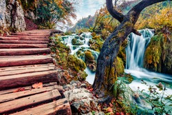 Marvelous morning view of pure water waterfall in Plitvice National Park. Spectacular autumn scene of Croatia, Europe. Beauty of nature concept background.