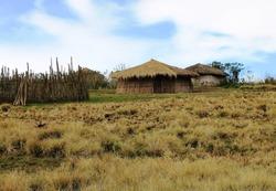 Masai Bomas in a Masai Village in Northern Tanzania