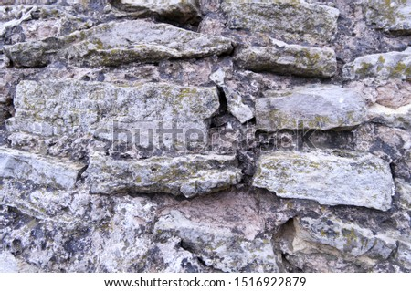 Masonry. The ancient wall is folded and large rough rough stones bonded with clay-lime mortar. The texture of wild stone. #1516922879