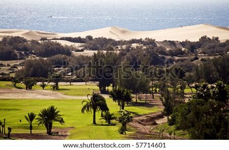 Maspalomas sand dunes in Gran Canaria