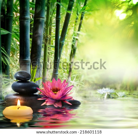 massage in nature - zen concept