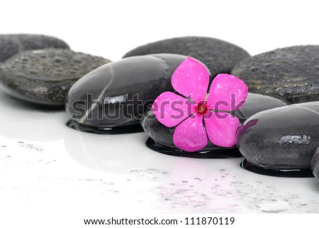 massaging stones wet with pink flower