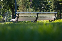 massive bench in the city Park on a summer day