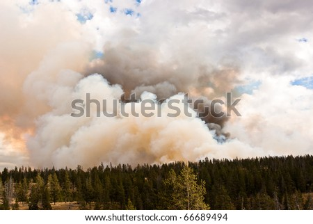 Massive clouds blow in wind of forest fire in Yellowstone