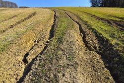 Massive soil erosion landscape field and road destruction by erosive process of water, environmental damage.