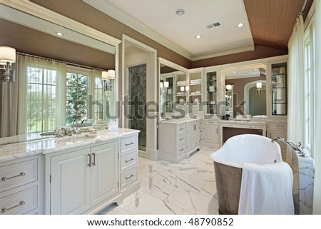 Master bath in luxury home with back yard view